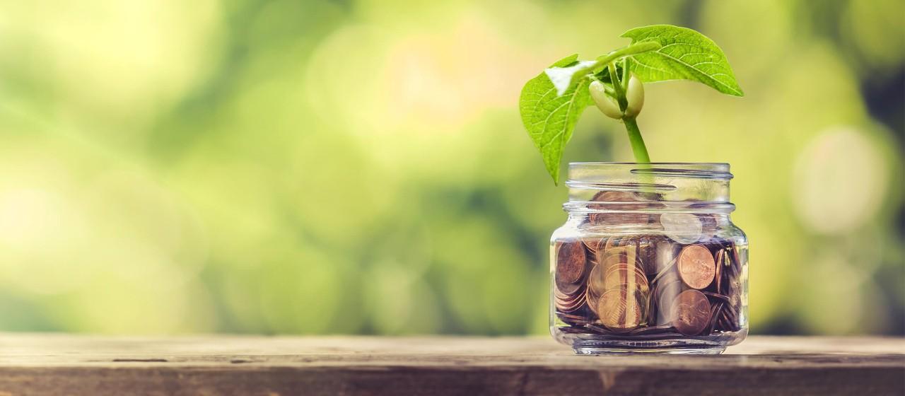 Keimling im Glas mit Kleingeld